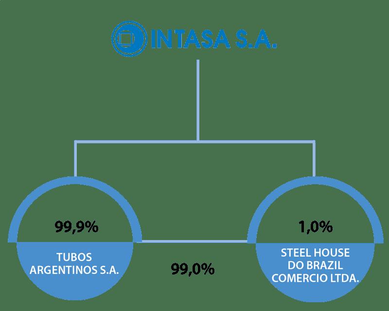 Holding INTASA 2020